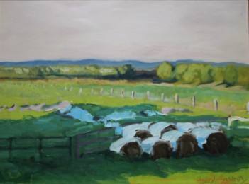 sessions-roundbales-and-shaded-pasture-oil-on-panel