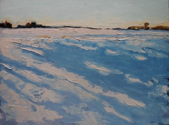snowshadows